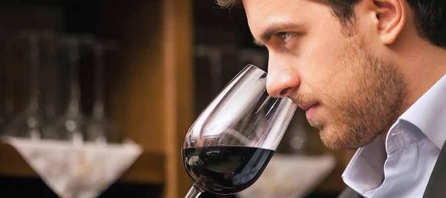 saber catar un vino es importante