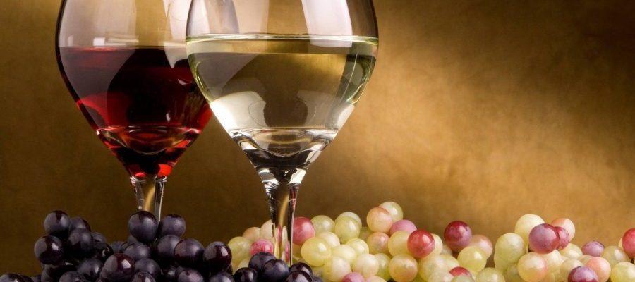 vino y uva